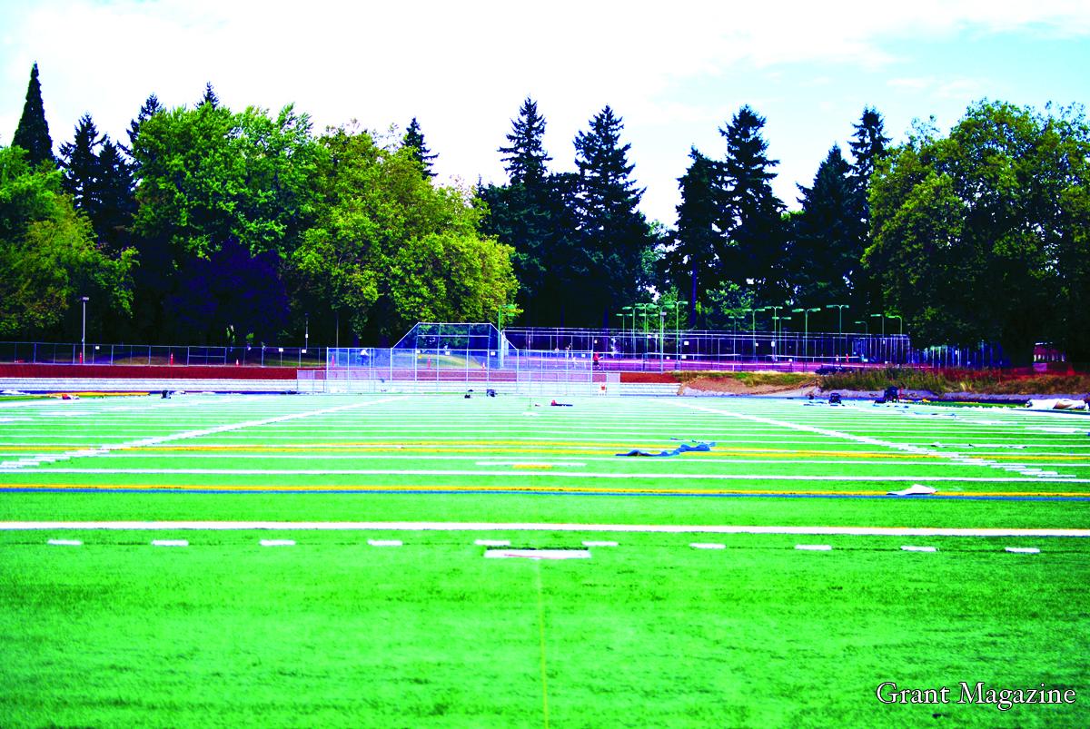 Field (2) online