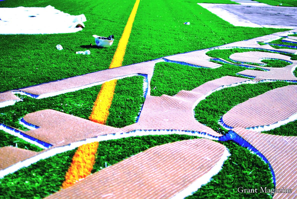 Field (3) online