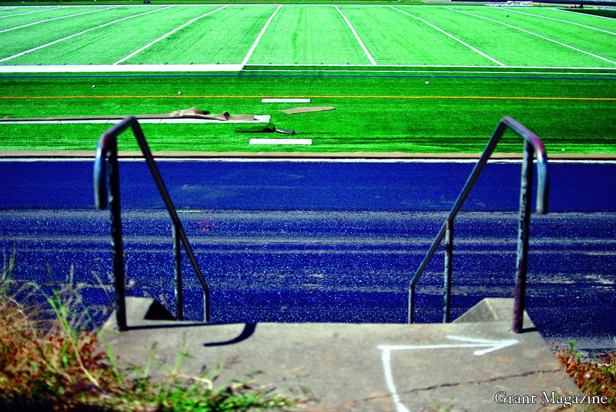 Field (4) online