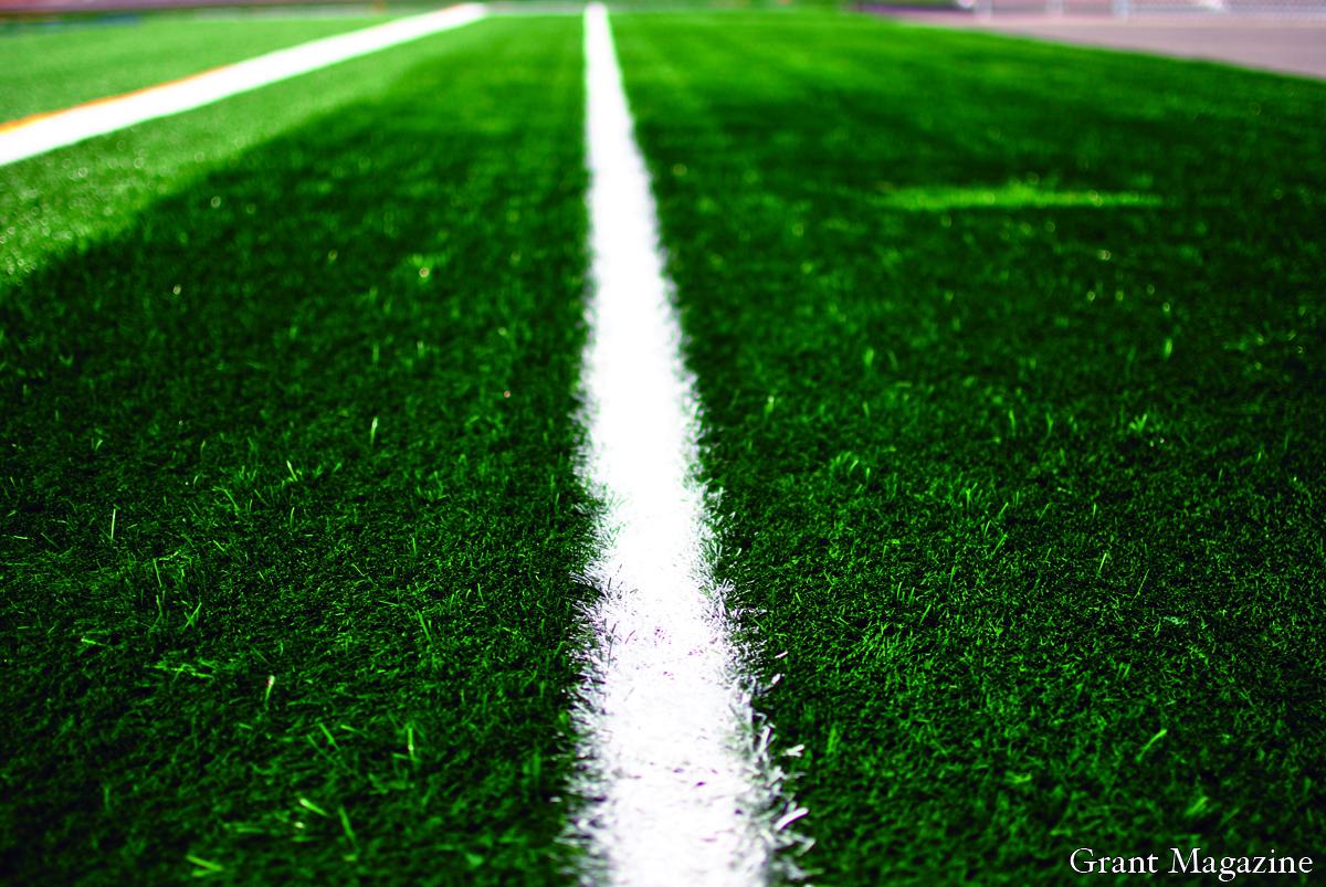 Field (6) online